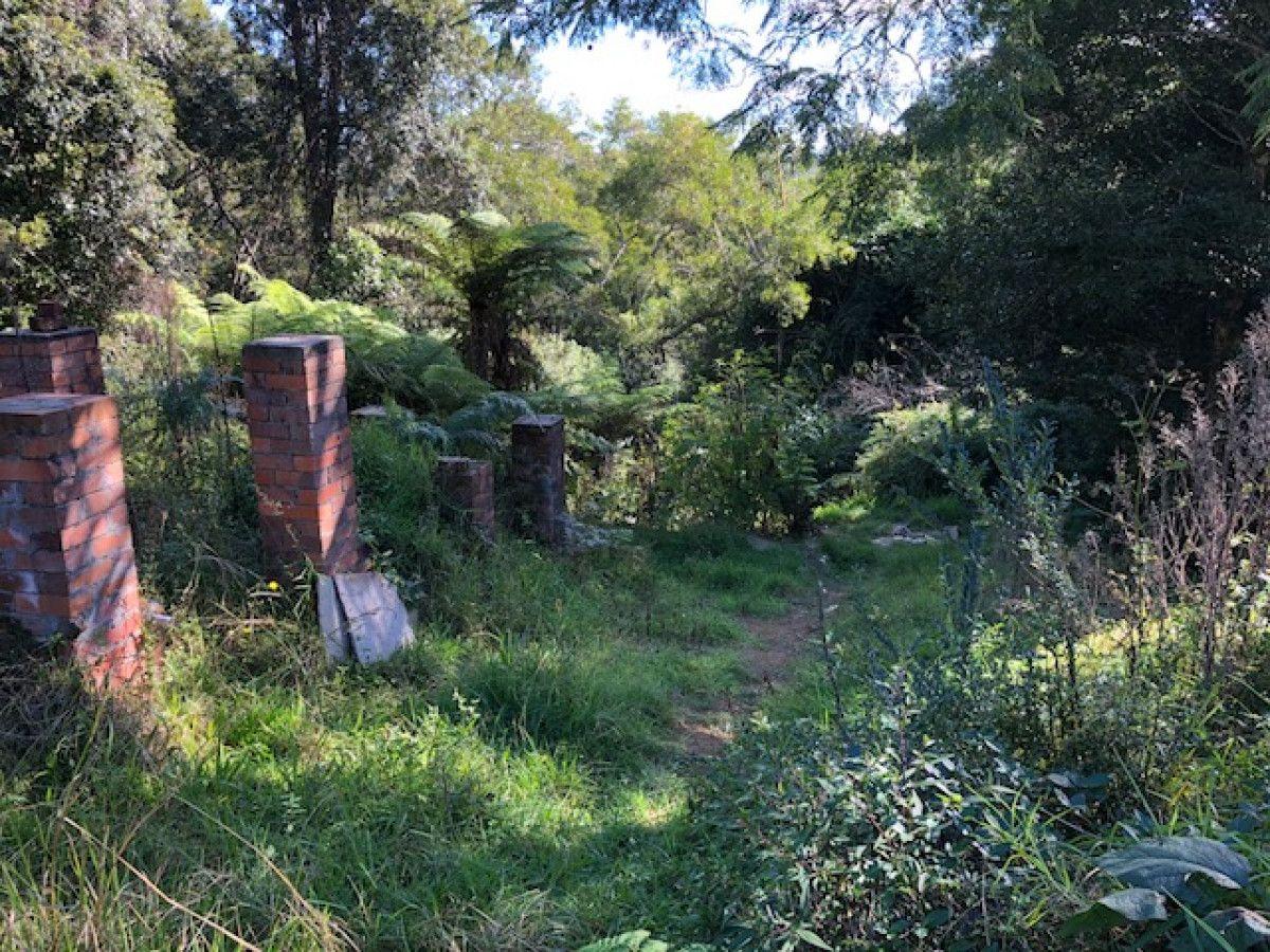 125 Glenwarrin Road, Elands NSW 2429, Image 2
