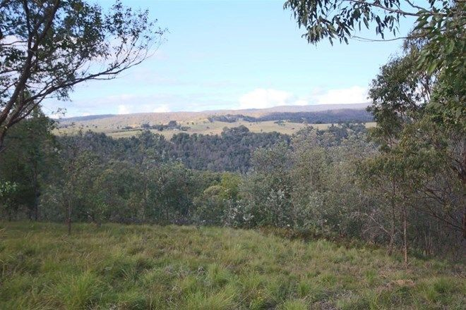 Picture of 992 Timbarra Road, TENTERFIELD NSW 2372