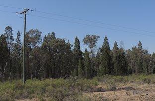 Picture of 52 Honey Pot Lane, Coonabarabran NSW 2357