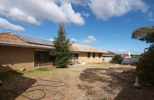 Picture of 521 Montague Road, Modbury SA 5092