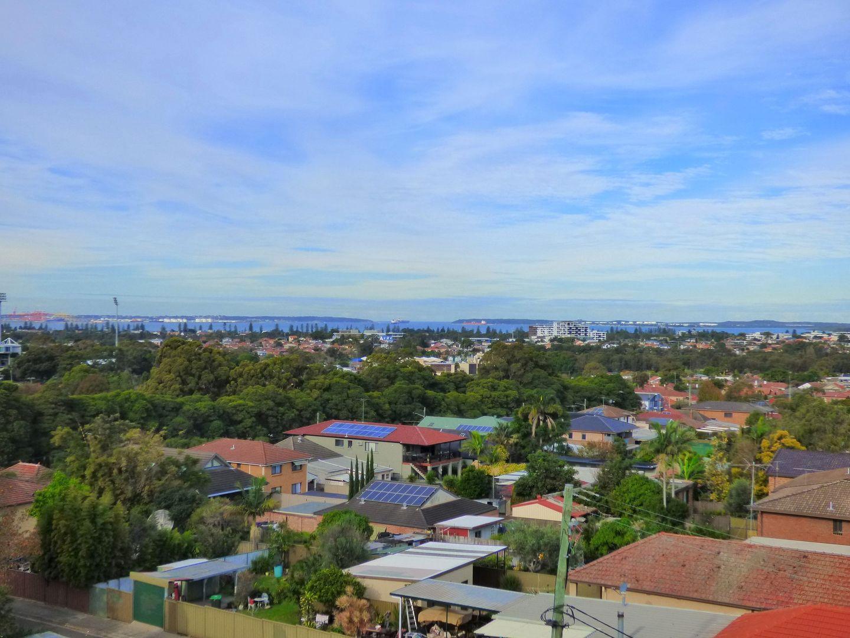 45 Andover Street, Carlton NSW 2218, Image 1