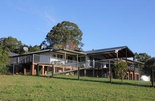 Mortons Creek NSW 2446