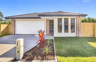 Picture of Daintree Court (413 Chambers F, Park Ridge QLD 4125