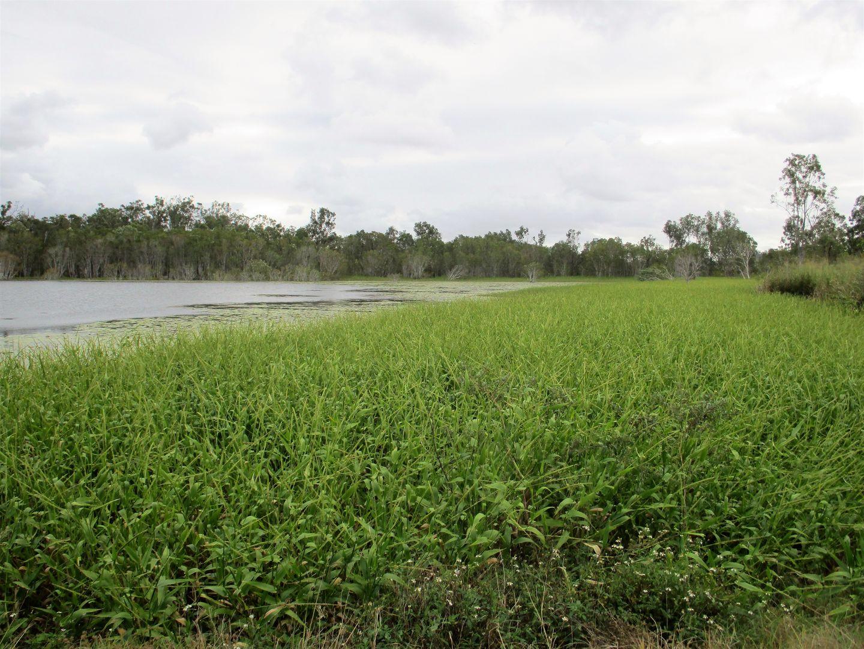 Lots Thorogood Road, Kelsey Creek QLD 4800, Image 2
