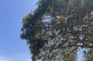 Picture of 4/71 Claremont Street, Campsie NSW 2194