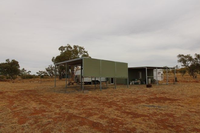 Picture of 0 Selwyn Road, KURIDALA QLD 4824