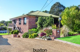 Picture of 11 Trethowan Street, Mount Pleasant VIC 3350