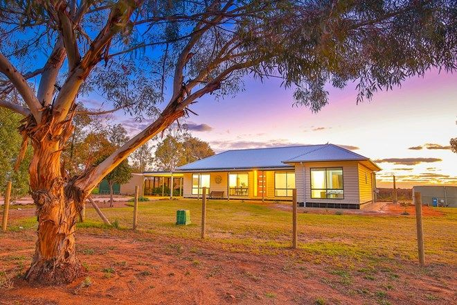 Picture of 12 Krake Road, RED CLIFFS VIC 3496