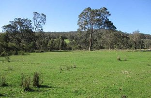 Picture of Harewood Road, Denmark WA 6333