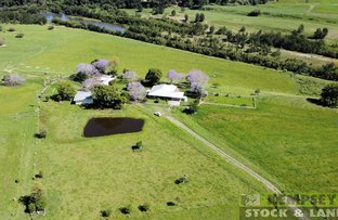 Picture of 61 Borgers Accs, Mooneba NSW 2440