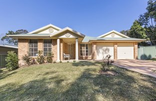 Picture of 7 Syncarpia Way, Winmalee NSW 2777