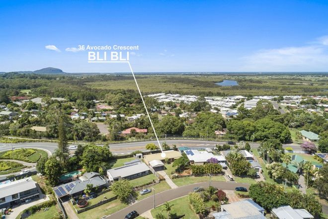 Picture of 36 Avocado Crescent, BLI BLI QLD 4560