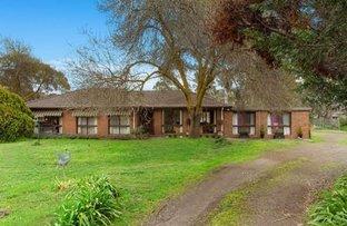 Picture of 8 Granter Street, Kangaroo Flat VIC 3555