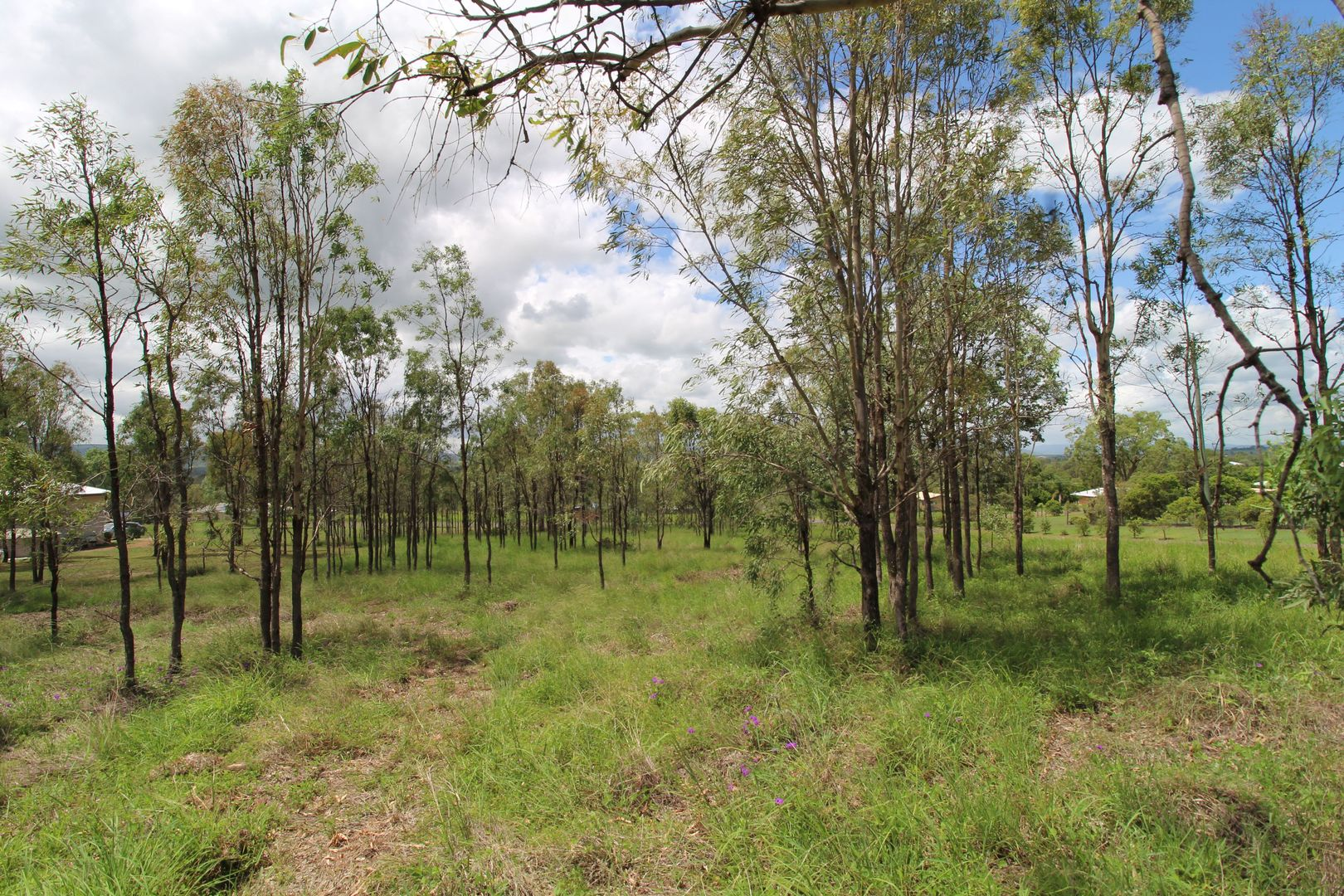 Lot 701 McConnel Street, Braemore QLD 4313, Image 1