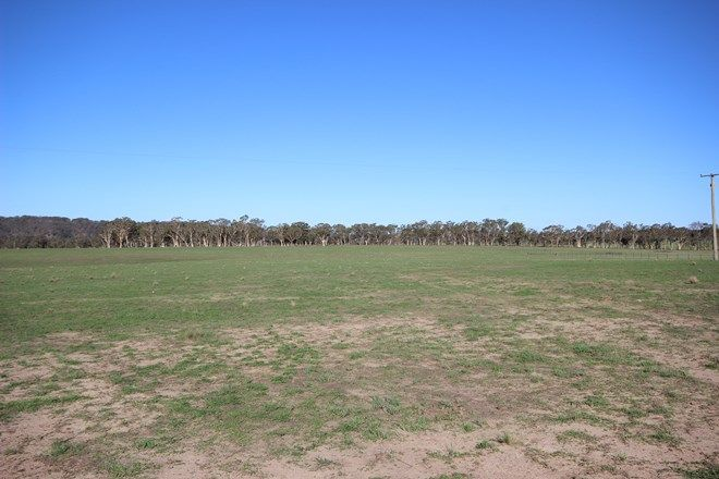 Picture of Lot 2/611 Inverary Road, PADDYS RIVER NSW 2577