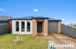 13 Lanthorn Crescent, Cranbourne East VIC 3977