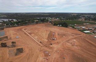Picture of Lot 19 Sturt  Highway, Gol Gol NSW 2738