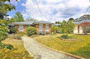 114 Waratah  Road, Wentworth Falls NSW 2782