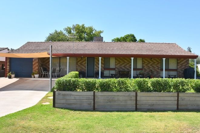 Picture of 11 Logan Lane, MOREE NSW 2400