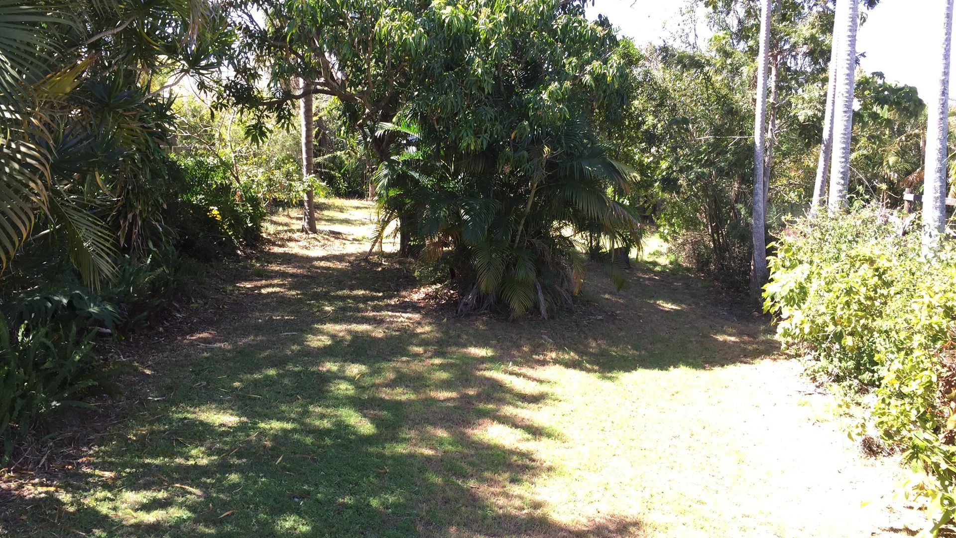 250 Whites Road, Lota QLD 4179, Image 14