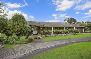 Picture of 29 Hensley Park Road, Hamilton VIC 3300