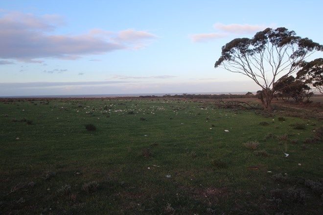 Picture of Lot 3 Stilt Road, BROWNLOW SA 5374