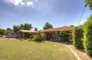 Picture of 26 Coronilla Way, Forrestfield WA 6058