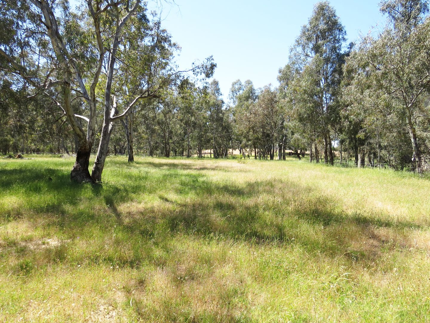 1216 South Costerfield-Graytown Road, Graytown VIC 3608, Image 1