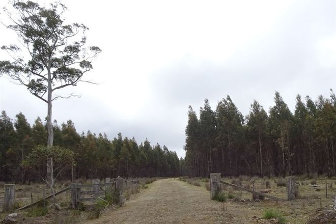 Picture of . Long Marsh Road, LAKE LEAKE TAS 7210