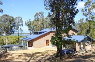 Picture of 36 Gleeson Road, Wonboyn Via, Eden NSW 2551