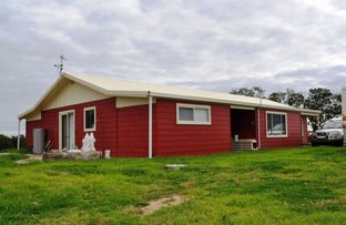 Picture of 915 Blue Springs Road, Gulgong NSW 2852