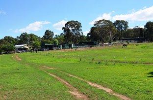 81 Adelong Road, Gulgong NSW 2852