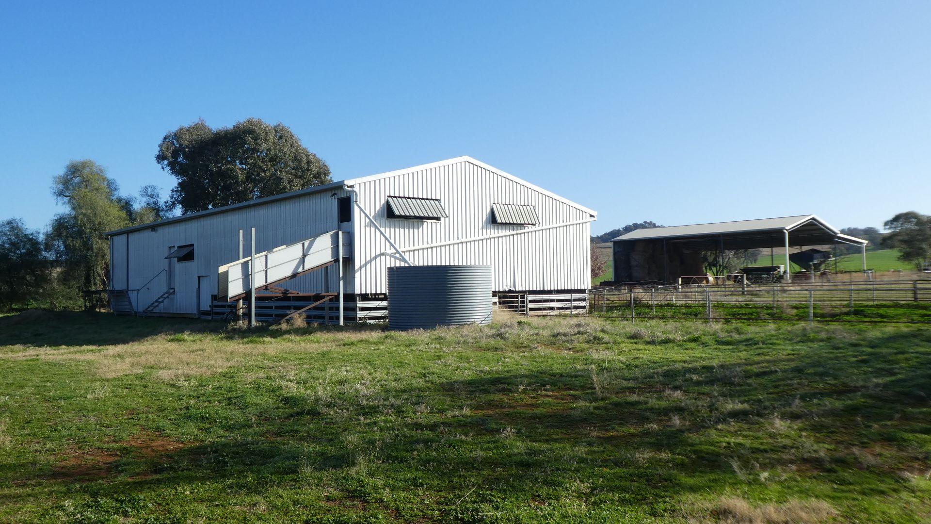 335 Mcrories Lane, Wagga Wagga NSW 2650, Image 2