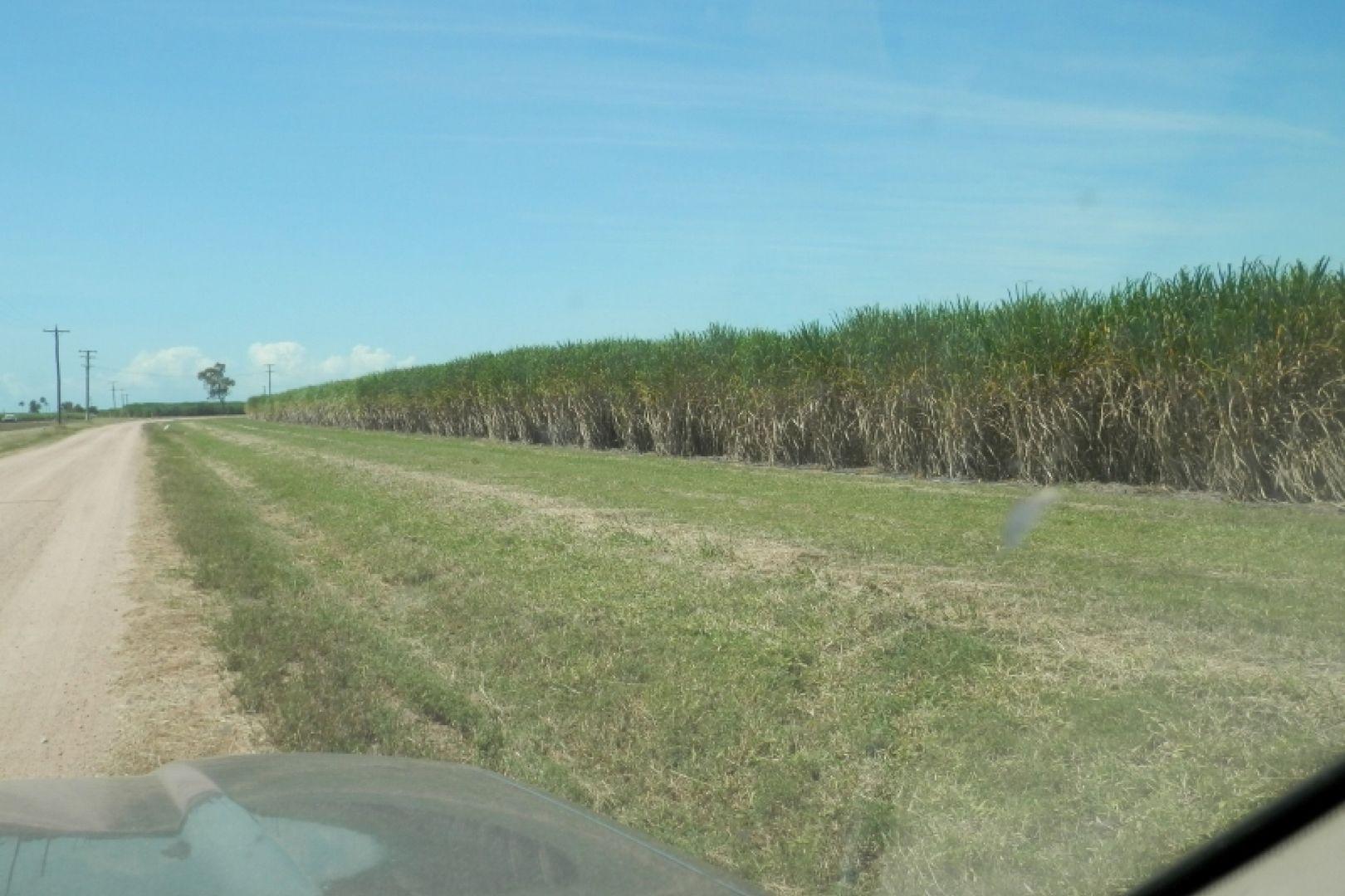 252 Sandhill Road, Rita Island QLD 4807, Image 2