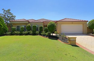 Picture of 21 Illawarra Cres, Canning Vale WA 6155