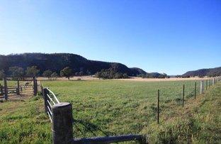 Lot1 Giants Creek Road, Sandy Hollow NSW 2333