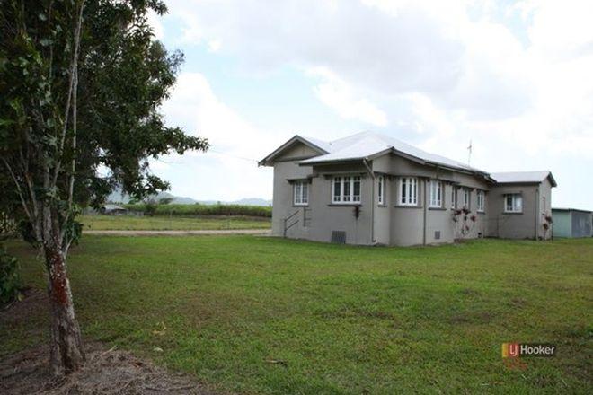 Picture of 288 Old Tully Road, MIDGENOO QLD 4854