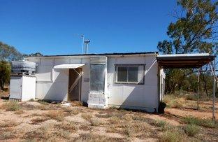 Picture of WLL 14573 Canfells, Lightning Ridge NSW 2834