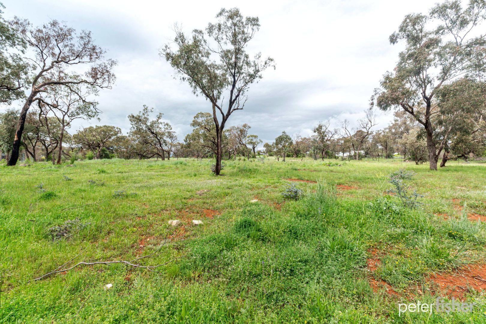 1554 Peabody Road, Molong NSW 2866, Image 1