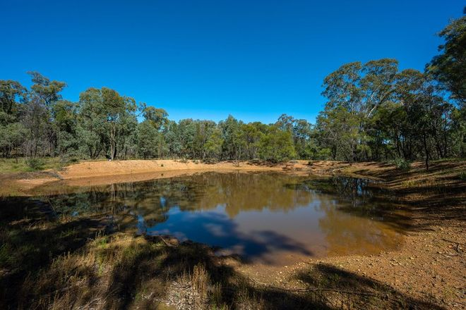 Picture of 589 Patrick Road, DUNEDOO NSW 2844