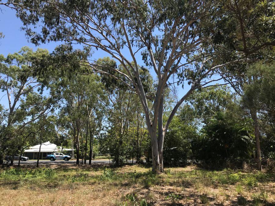 72 Waverley Street, Bucasia QLD 4750, Image 1