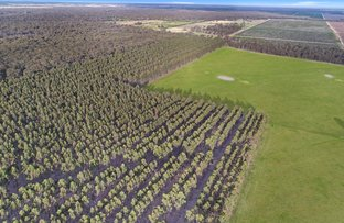 Picture of . South Gippsland Highway, Giffard West VIC 3851