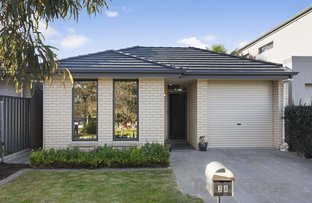 Picture of 3A Shackleton Place, Flinders Park SA 5025