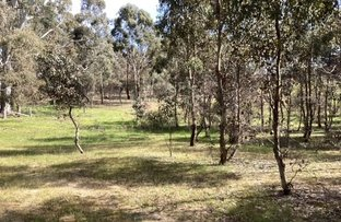 Picture of Lot 38B Lexton-Evansford Road, Evansford VIC 3371