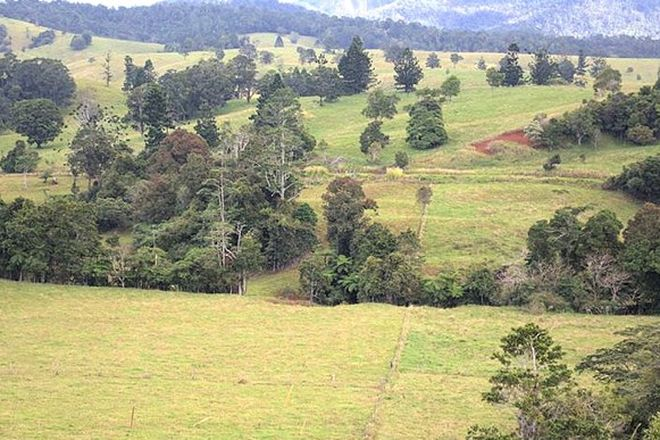 Picture of 905 Old Palmerston Hwy, MIDDLEBROOK QLD 4886