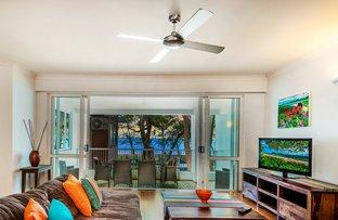 Picture of 9/111-117 Williams Esplanade, Palm Cove QLD 4879