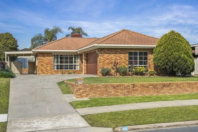 Picture of 44 Campaspe Street, WODONGA VIC 3690