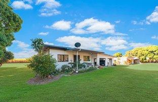 362 Barrett Road, Mutarnee QLD 4816