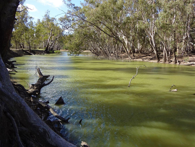. Morago West & Eastwood, Deniliquin NSW 2710, Image 2