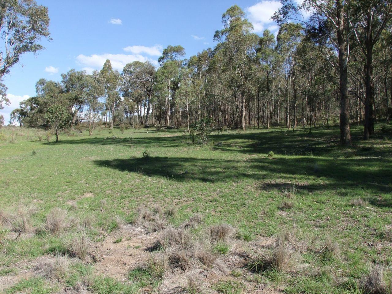 Gowan Road, Orange NSW 2800, Image 1